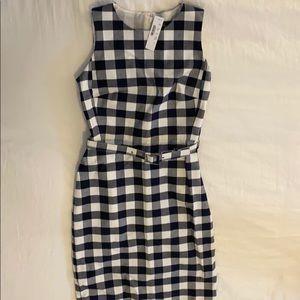 Brand new, never worn gingham J Crew dress